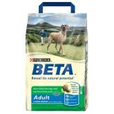 Beta Adult Large Breed 14kg