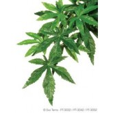 Exo Terra Silk Abutilon Plant Lge