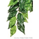 Exo Terra Silk Fiscus Plant Lge