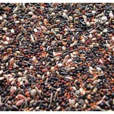 Canary & British Finch Conditioning Seed 1Kg