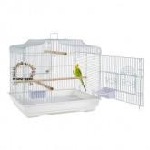 Rain Forest Puerto Rica Bird Cage